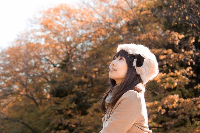 N825_akinoyousu_TP_V1[1]