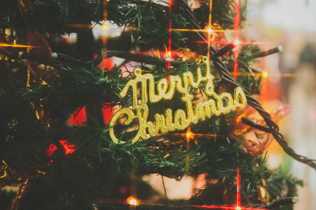 christmas0I9A4341_TP_V1[1]