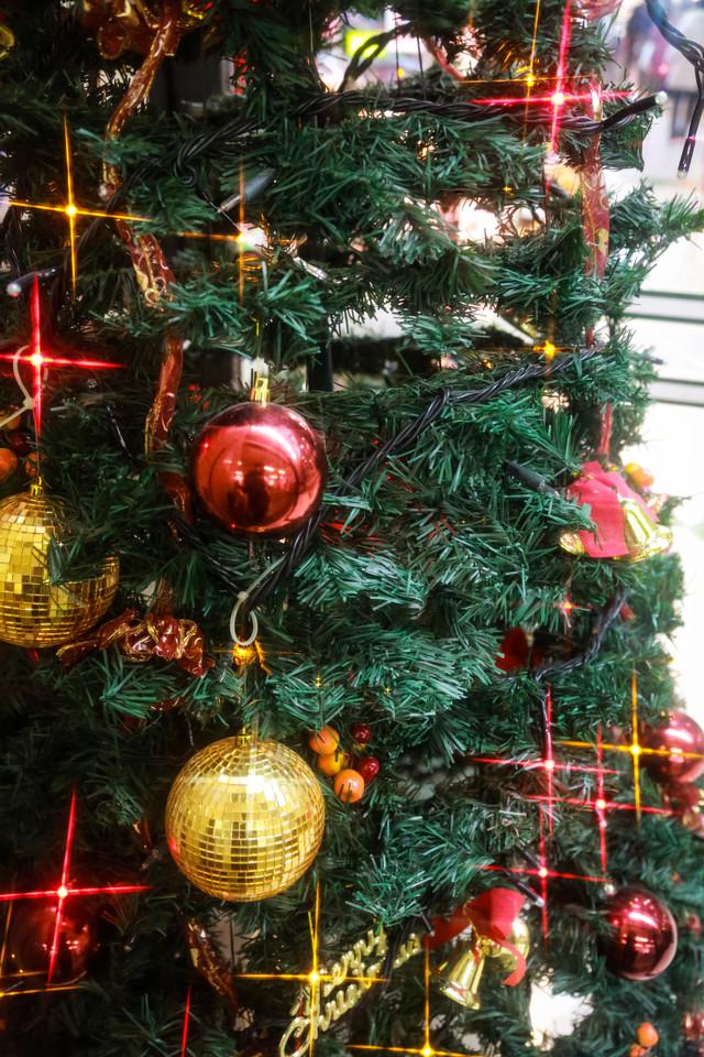 christmas0I9A4350_TP_V1[1]